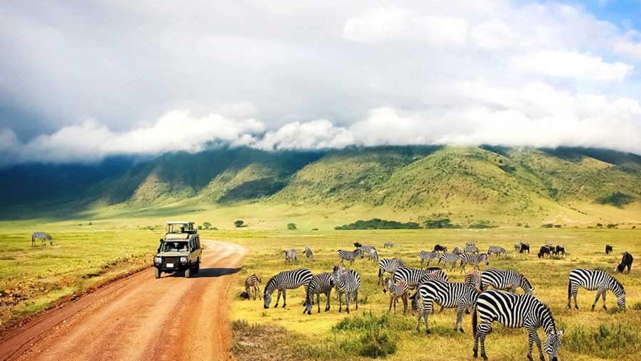 Pour un voyage en Afrique, la question de l'assurance voyage
